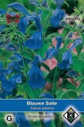 Bright blue Salvia patens seeds