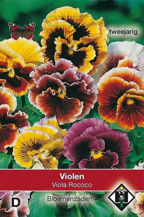 Viola Rococo - Viool zaden