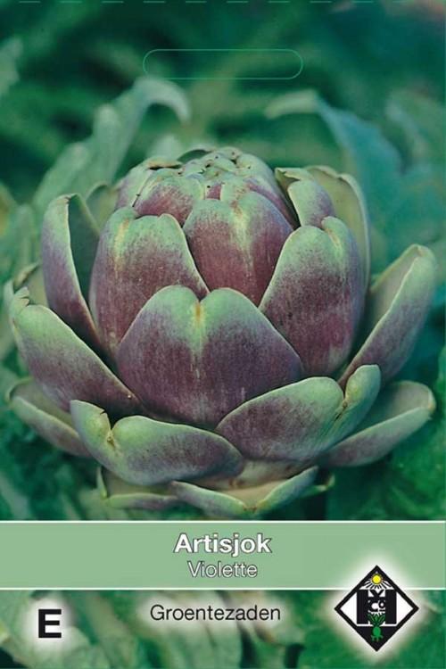 Violette Artichoke seeds
