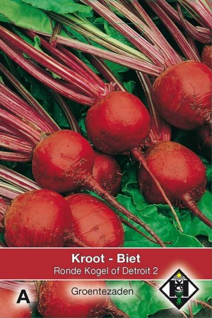 Beetroot Kogel of Detroit 2