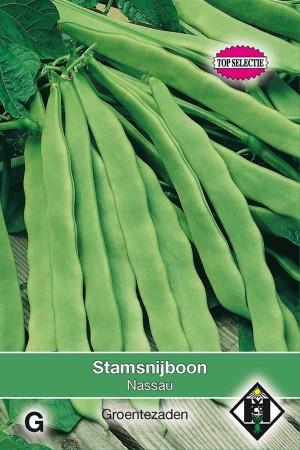 Dwarf String Beans Nassau