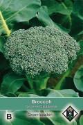 Groene Calabrese - Broccoli