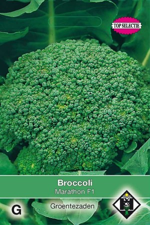 Broccoli Marathon F1