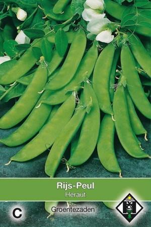 Sugar Peas Heraut - Rijspeul