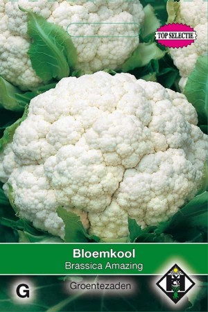 Amazing - Bloemkool