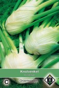 Florence - Fennel