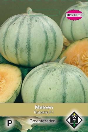 Stellio F1 (vh Rubens) - Melon