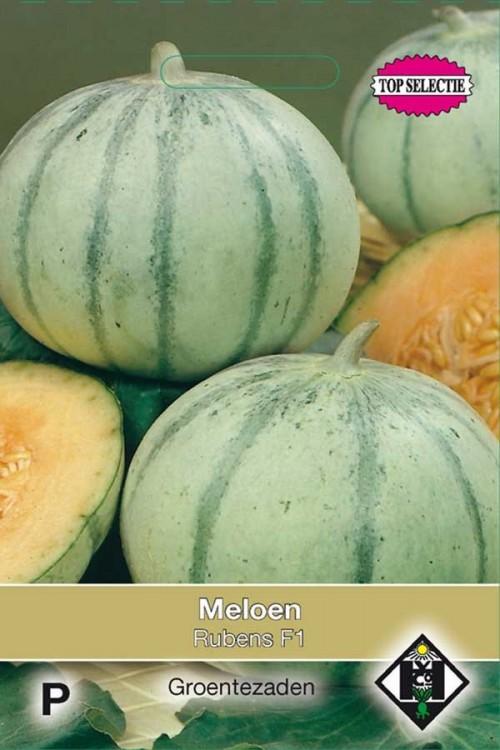 Rubens F1 - Melon