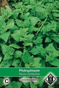 Nieuw-Zeelandse - Spinach