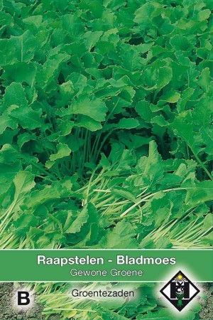 Raapstelen Bladmoes Gewone groene