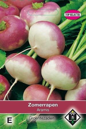 Turnip Aramis Zomerrapen