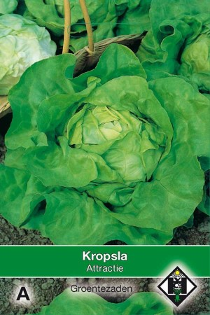Kropsla Attractie
