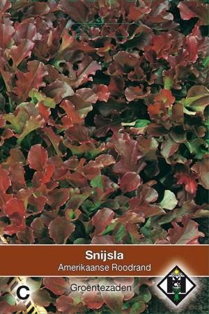 Leaf Lettuce Amerikaanse Roodrand - Snijsla