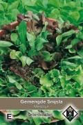 Mixed Mesclun - Lettuce