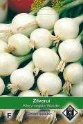 Allervroegste wonder white onion seeds