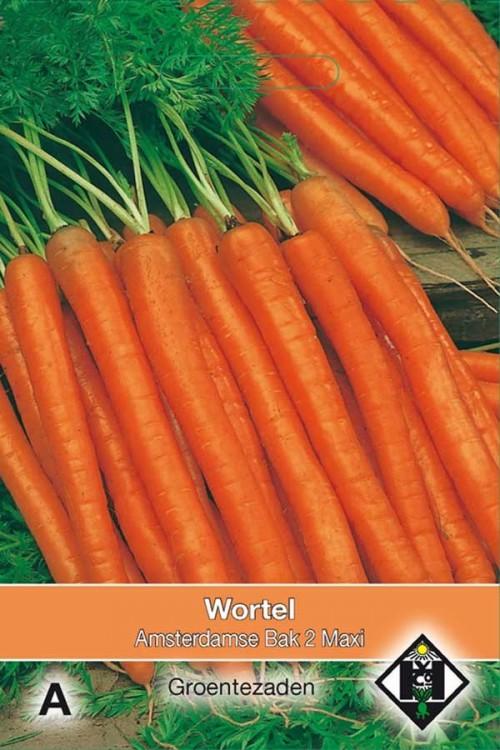 Amsterdamse Bak 2 Maxi - Carrot