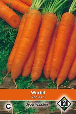 Wortelen - Wortels Nantes 5