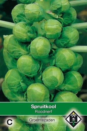 Brussels Sprouts Roodnerf