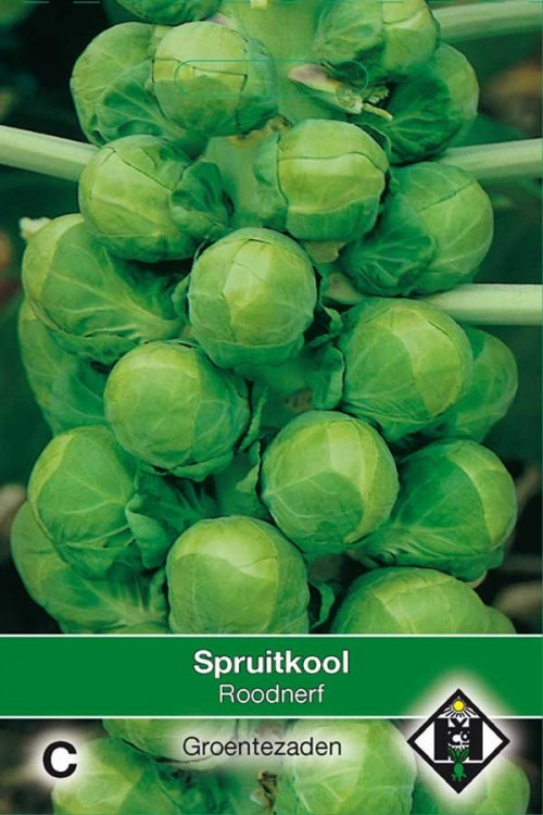 Roodnerf - Brussels sprouts