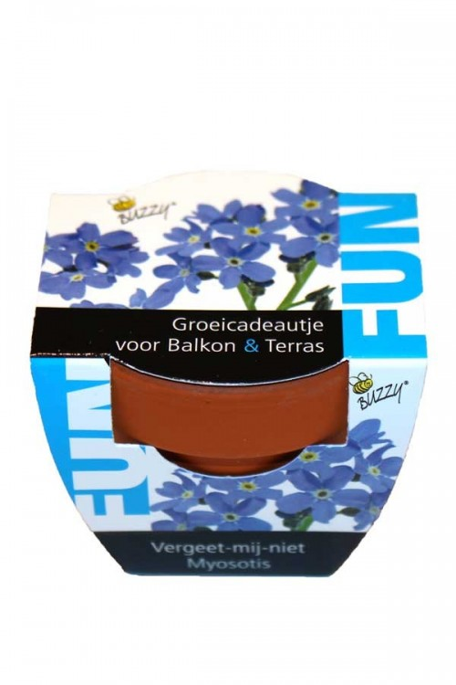 Mini Growing Gifts Forget-me-not - FUN