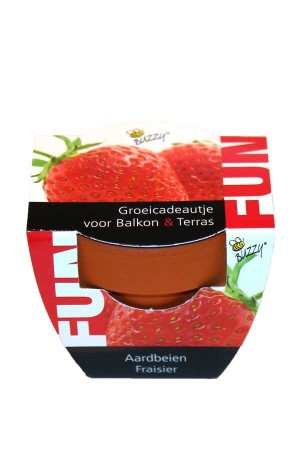 Strawberry - FUN Growing Kit