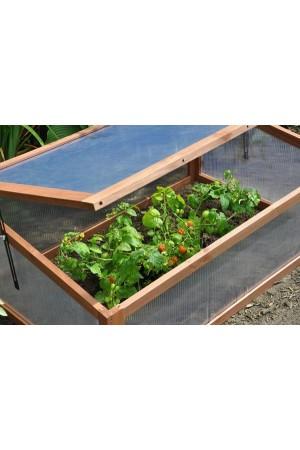 Low Greenhouses Sweet Tomato - Broeikas