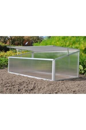 Low Greenhouses Viola Greenhouse