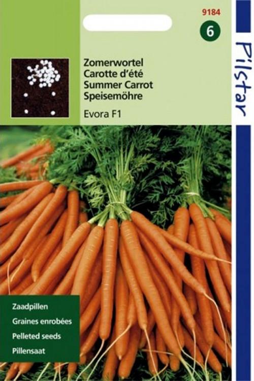 Pelleted seeds Laguna-Evora F1 Pilstar