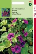 Malva Mallow seeds