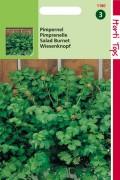 Kleine Pimpernel zaden