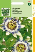 Blue Passion - Flower seeds