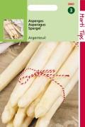 Argenteuil Asparagus