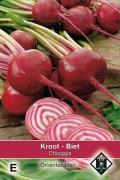 Chioggia - Beetroot