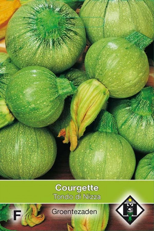 Tondo di Nizza - Courgette