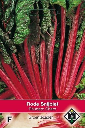 Snijbiet Rhubarb Chard - rode snijbiet