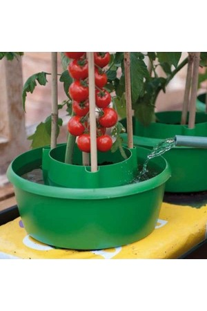 Self Watering Systems Plant Halo