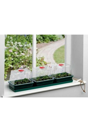 Propagator Windowsill Self Watering Propagator - G171