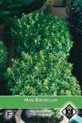 Pistou - Mini Sweet Basil seeds