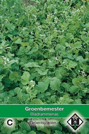 Groenbemesters Bladrammenas - groenbemester