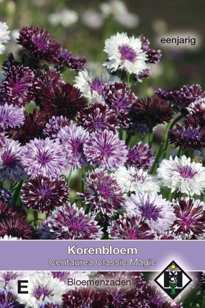 Korenbloem (Centaurea) Classic Magic