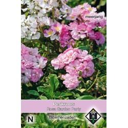Flower seeds Garden Party - Rosa