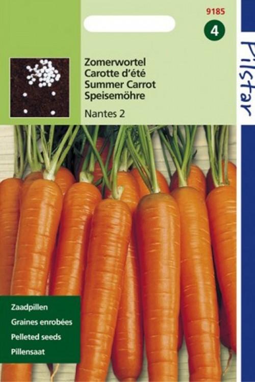 Zomerwortel Nantes 2 - Pilstar