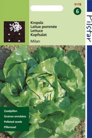 Zaadpillen - Pillenzaad Milan Pilstar