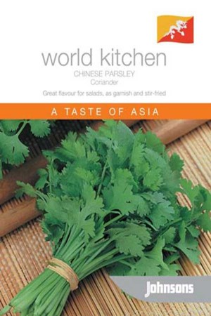 Coriander Coriander - Chinese Parsley