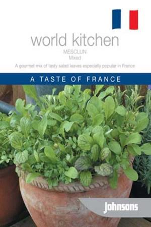 Lettuce Mesclun Mixed