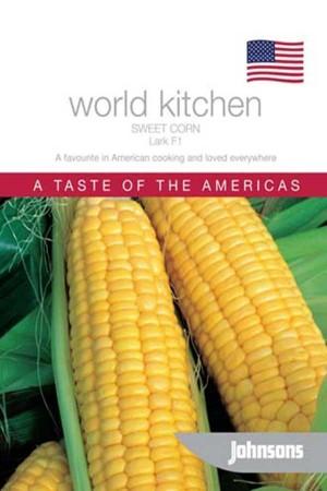 Corn / Sweet Corn Lark F1