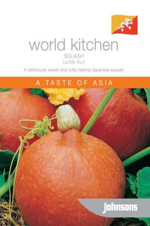 Pumpkin - Squash Uchiki Kuri