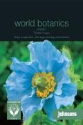 Meconopsis Tibetan Poppy