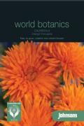 Marigold (Calendula) Orange Porcupine