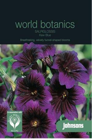 Kew Blue - Salpiglossis seeds